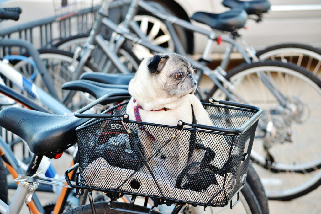 Låsesmed cykel - Hjælp til cykellås